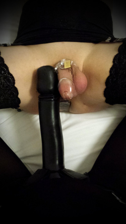 rencontre shemale live chat 116